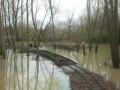 2-inondations-champignelles-2015